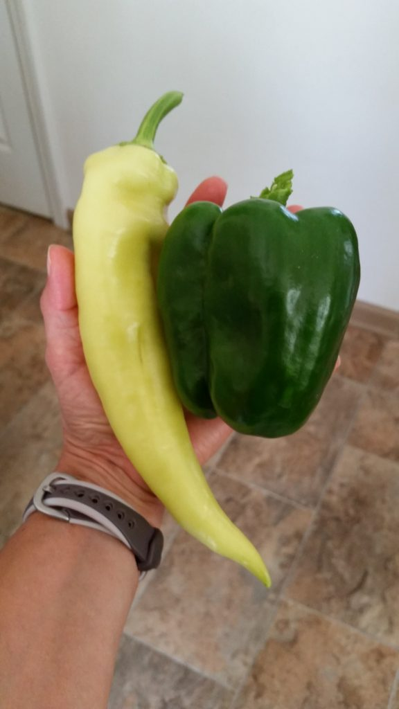 huge peppers